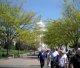 Capitol Hill I